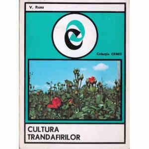 CULTURA TRANDAFIRILOR de V. RUSU