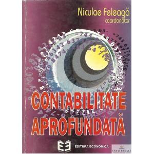 CONTABILITATE APROFUNDATA de NICULAE FELEAGA