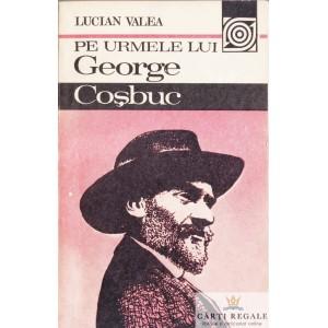 PE URMELE LUI GEORGE COSBUC de LUCIAN VALEA