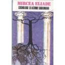 COSMOLOGIE SI ALCHIMIE BABILONIANA de MIRCEA ELIADE
