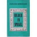 BILDER IM SPIEGEL de PAULINE SCHNEIDER