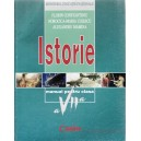ISTORIE. MANUAL PENTRU CLASA A VII A de FLORIN CONSTANTINIU